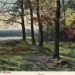 A Postcard William Pudney